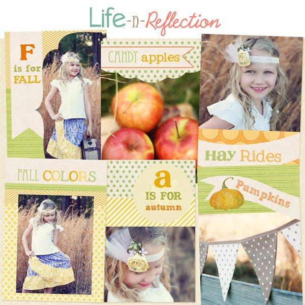 lifenreflection_wallet_harvest_preview