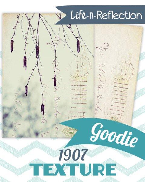 Goodie 1907