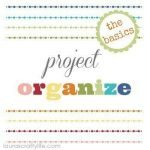 Project Organize The Basics