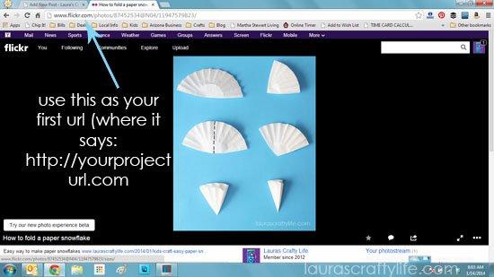 copy project url