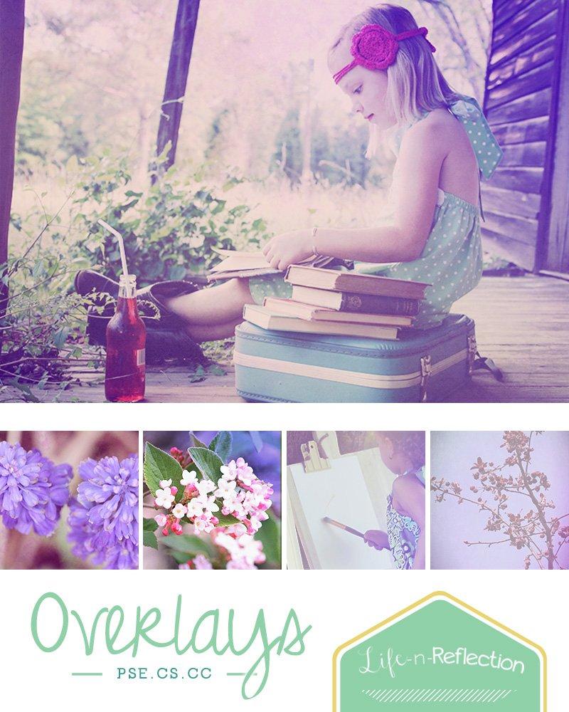 lifenreflection_lavenderlush_pre_1