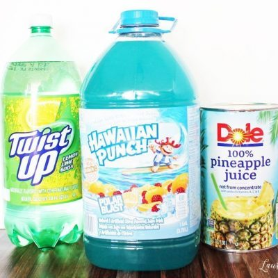 Ingredients for party punch