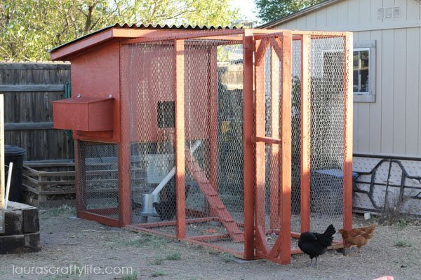 How to Build a Chicken Coop - Laura's Crafty Life