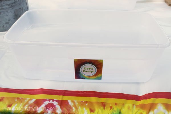 Use a plastic bin to contain tie dye for projects