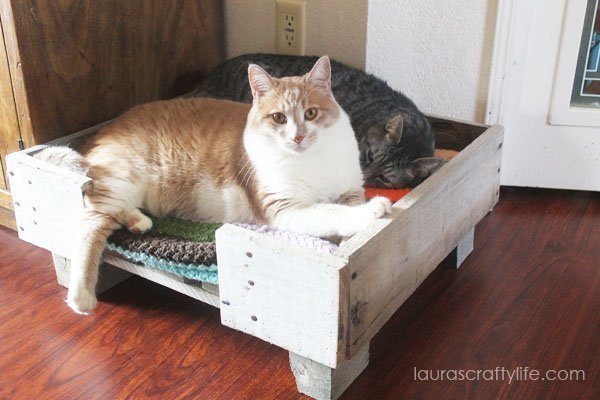 DIY Cat Pallet Bed - Laura's Crafty Life