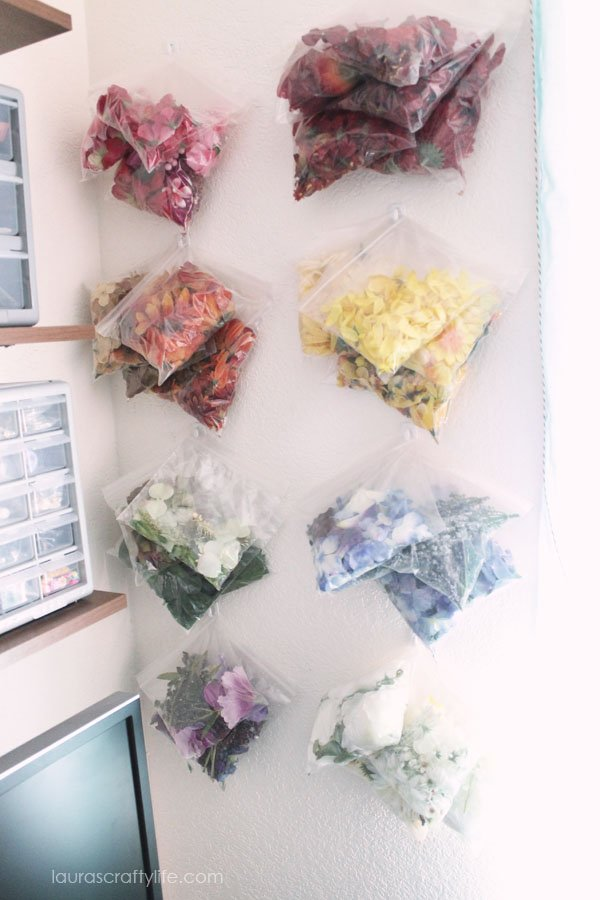 Flower storage and organization