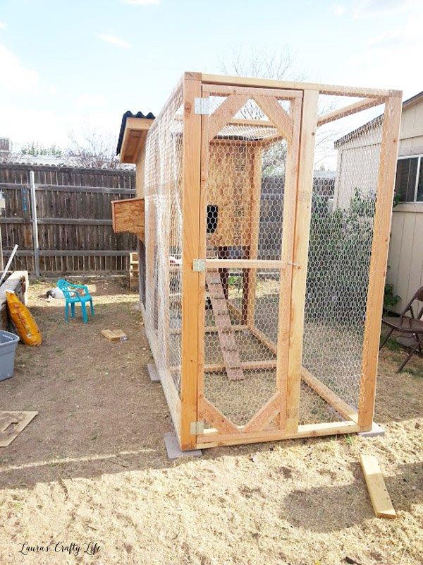 Door on chicken coop