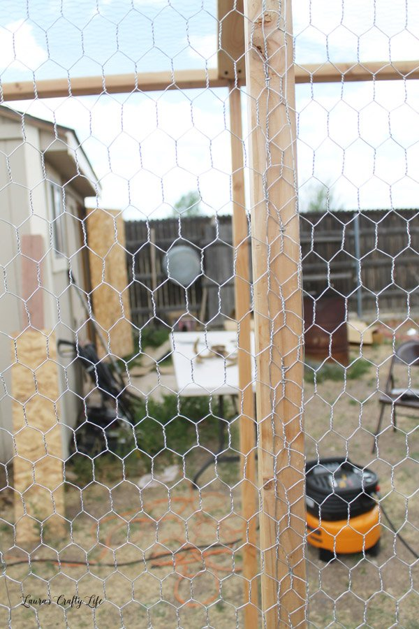 Overlap chicken wire on 2 x 4s