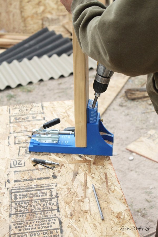 Use Kreg jig to attach ceiling and floor beams on chicken run