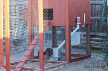 How to Build a Chicken Coop: Part 3