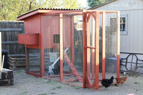 Stain chicken coop with Thompson's Water Seal solid stain