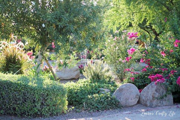 beautiful-garden-at-windmill-winery
