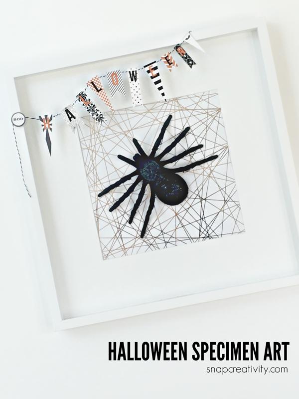 halloween-spider-specimen-art-hero-2