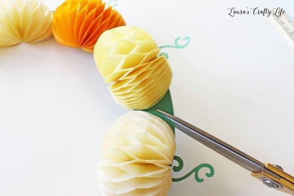 use-scissors-to-snip-between-the-pumpkins