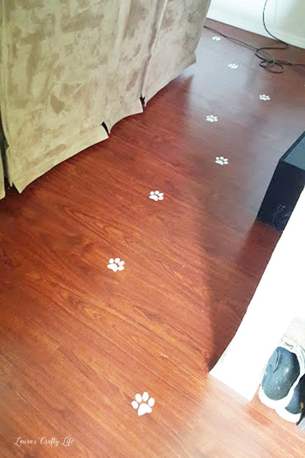 Cat paws on the floor for kitten party
