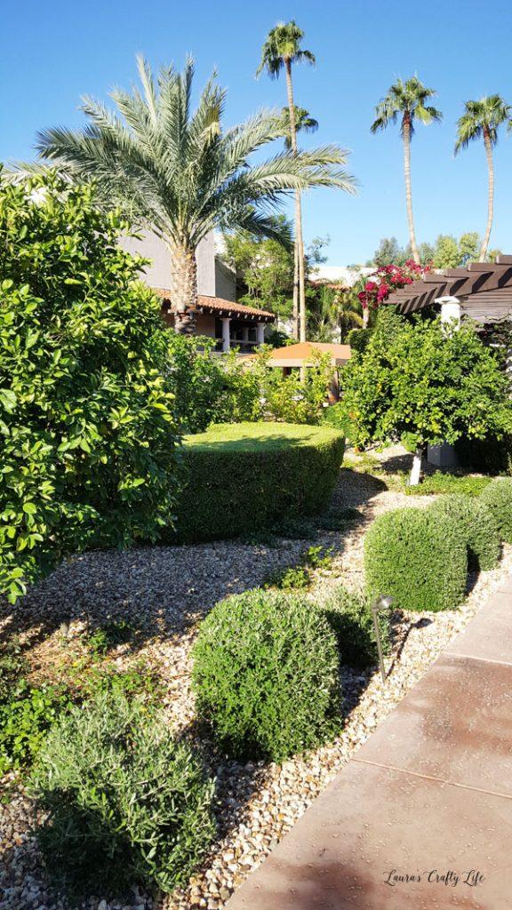 The Scottsdale Resort - beautiful scenery