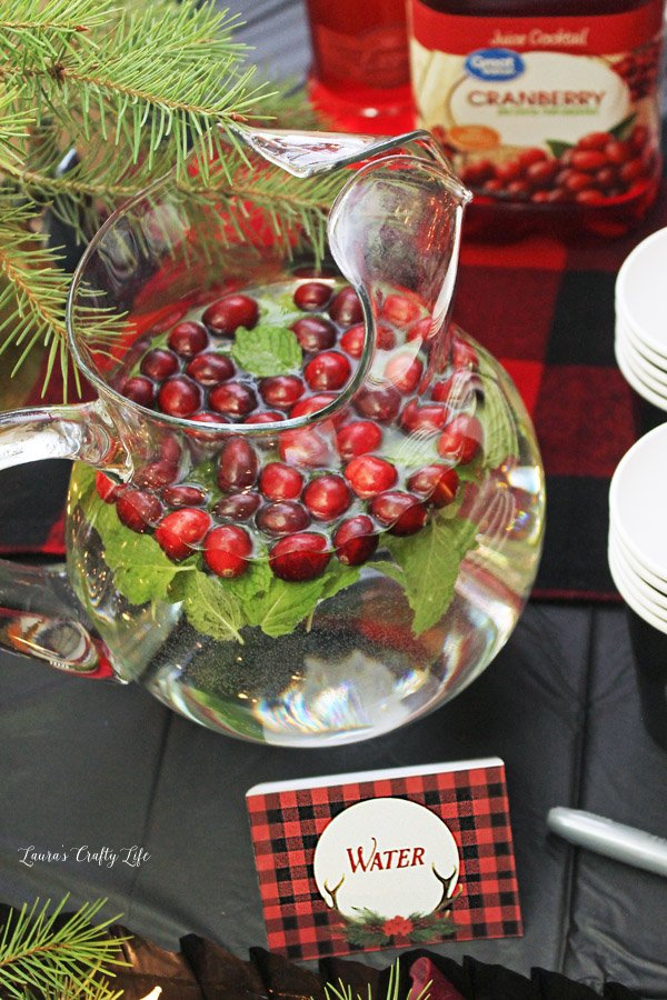 Cranberry and mint water for holiday or Christmas party