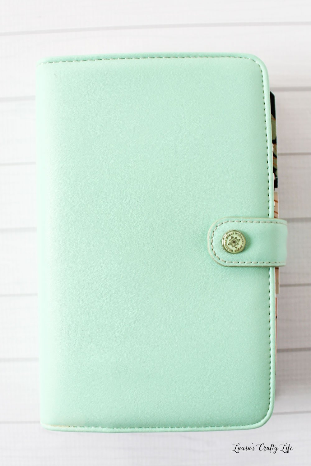 Websters Personal Color Crush Mint