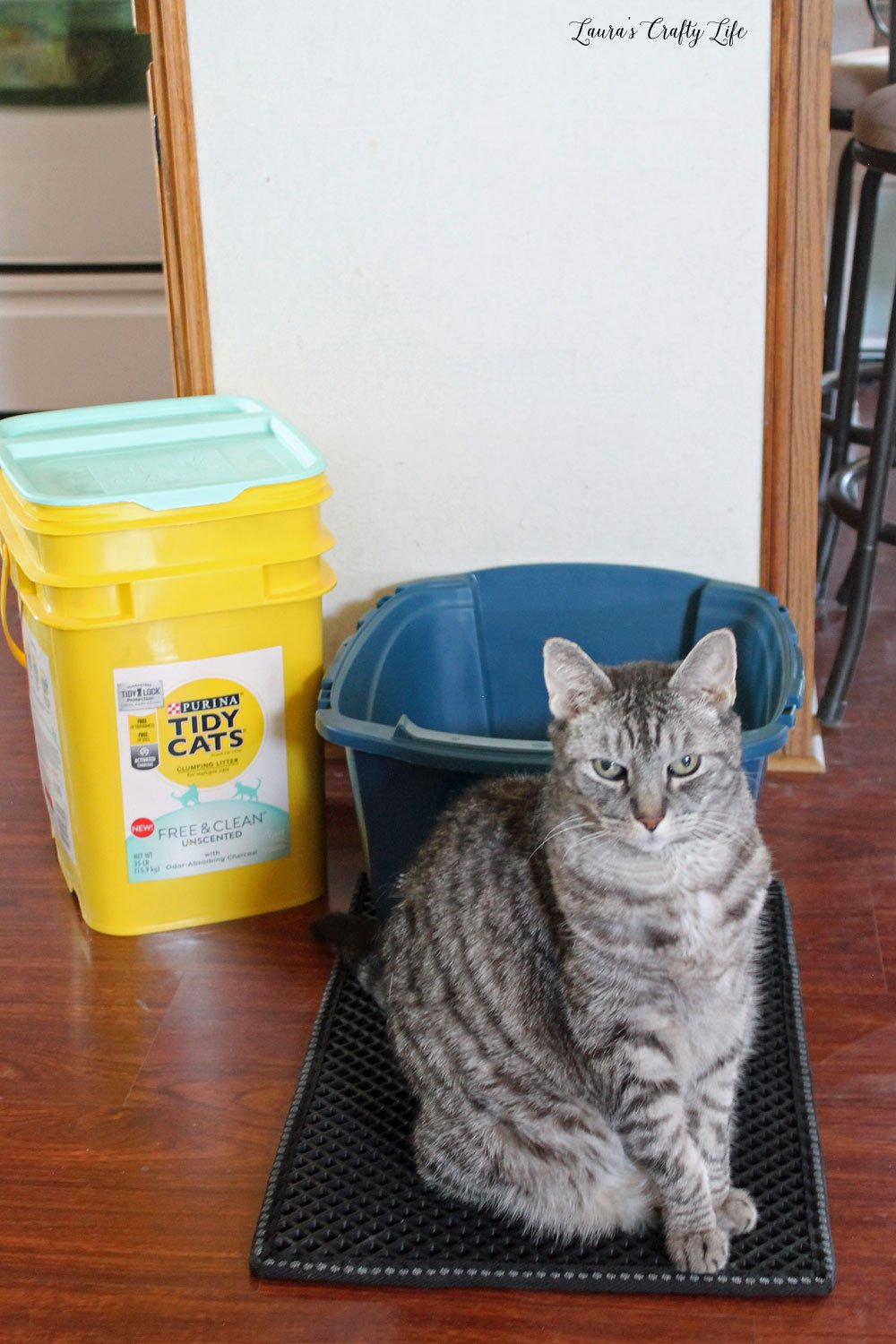 TIDY CATS® Free & Clean™ Unscented Clumping Litter #shop