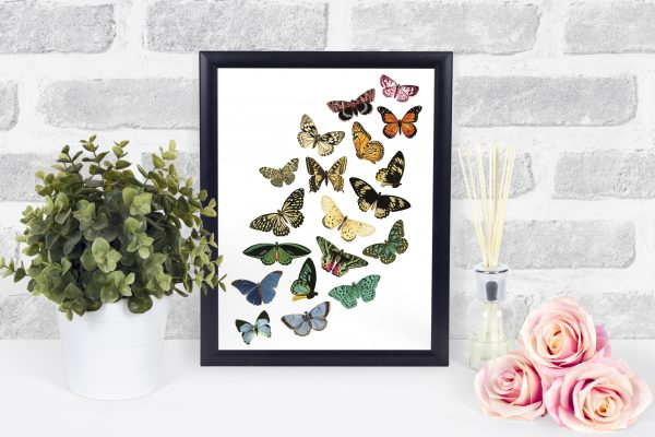 butterfly printable black frame