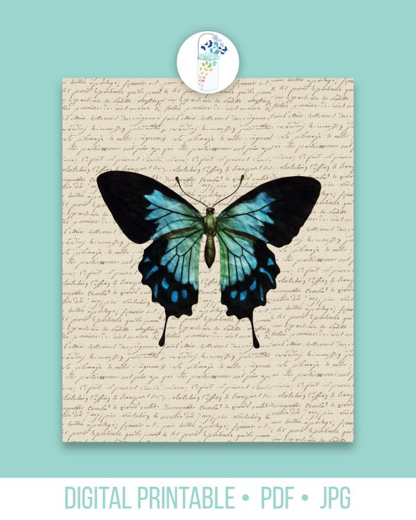blue butterfly book page digital art
