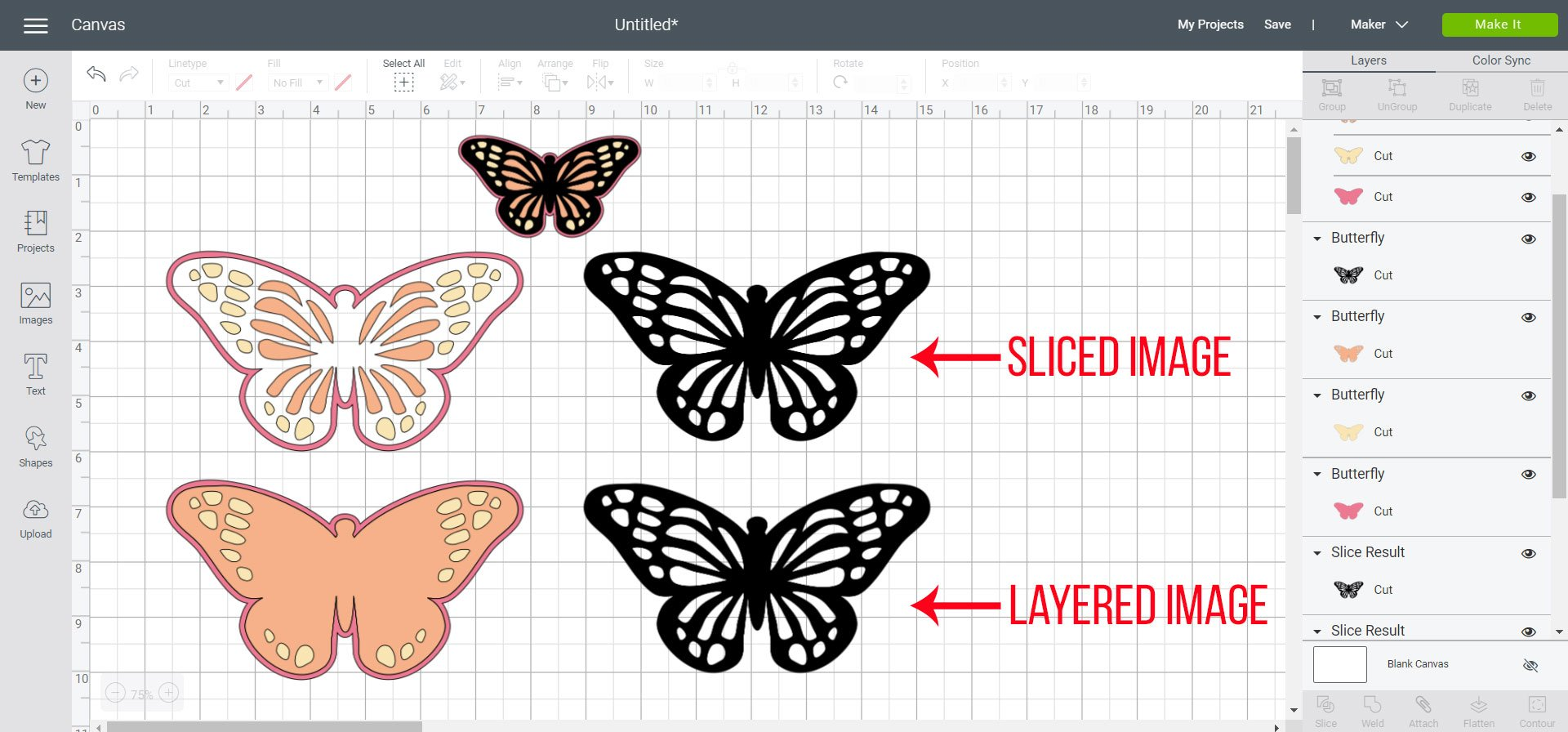 sliced vs layered image