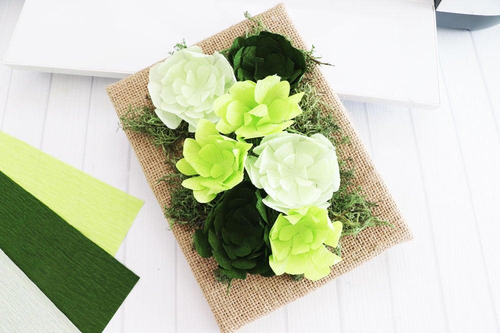 crepe paper succulent frame