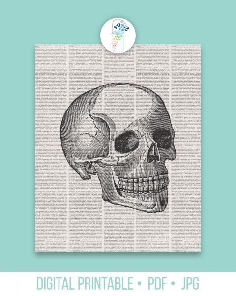 book page skull printable