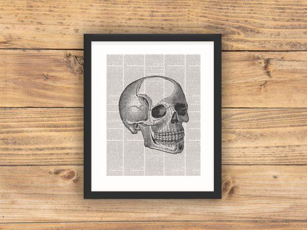 book page skull black frame mockup