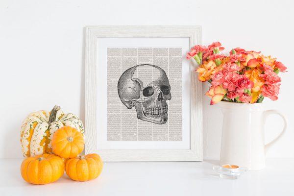 book page skull fall mockup